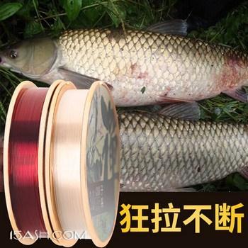 钓鱼王 禅 鱼线30米