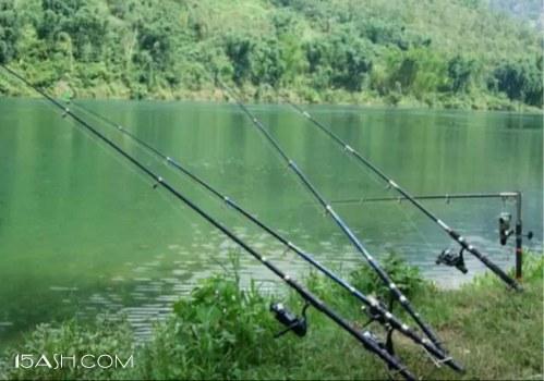 春季野钓的两款饵料配方,上鱼快的很!
