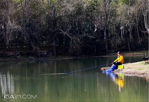 三月天气回暖了为什么不好钓鱼了